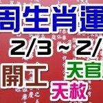 2020生肖運勢週報|02/03-02/09|金玲老師(有字幕)