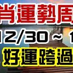 2020生肖運勢週報|12/30-01/05|金玲老師(有字幕)