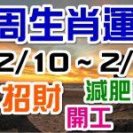 2020生肖運勢週報|02/10-02/16|金玲老師(有字幕)