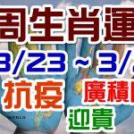 2020生肖運勢週報|03/23-03/29|金玲老師(有字幕)
